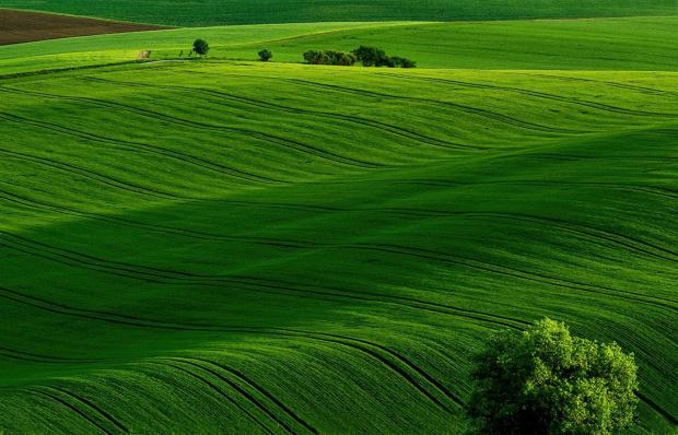 Zielone pagórki