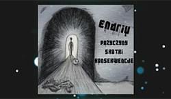 ENDRIU - Przyczyny Skutki Konsekwencje