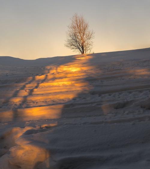 W promieniach słońca