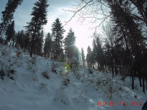 Zimowo Leskowiec